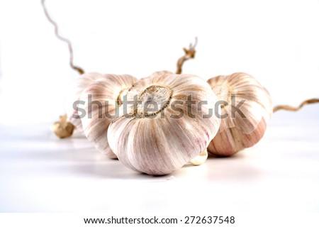 Garlic on white background - close-up - stock photo