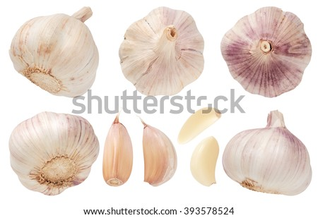 Garlic set isolated on white background. Top view. - stock photo