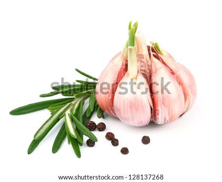 garlic with rasemary isolated on white background - stock photo
