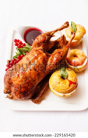 Garnished roasted turkey - stock photo