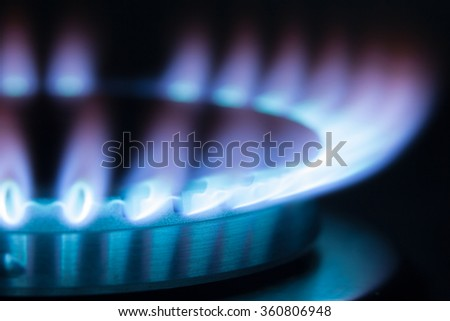 Gas burning in the burner of gas oven