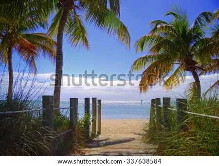 Gateway to the Beach: Warm, sandy beach, palm trees, and bright blue ocean.