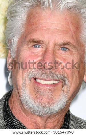 Gavin O'ConnorLOS ANGELES - JUL 29:  Barry Bostwick at the Hallmark 2015 TCA Summer Press Tour Party at the Private Residence on July 29, 2015 in Beverly Hills, CA