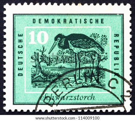 GDR - CIRCA 1959: a stamp printed in GDR shows Black Stork, Protection of Native Birds, circa 1959
