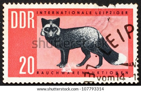 GDR - CIRCA 1963: a stamp printed in GDR shows Silver Fox, Vulpes Vulpes, circa 1963