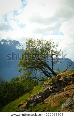 Geiranger autumn. scenic landscapes of the northern Norwegian fjords.  - stock photo