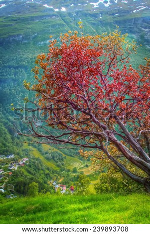 Geiranger autumn. scenic landscapes of the northern Norwegian fjords. Elements of this image furnished by NASA - stock photo