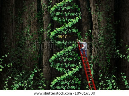 Gene therapy DNA helix concept with a medical genetics specialist doctor on a ladder climbing a plant as human chromosome anatomy as a biotechnology metaphor for genetic testing and repair. - stock photo