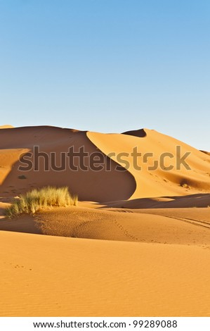 General view of Erg Chebbi oranges sand dunes at Morocco