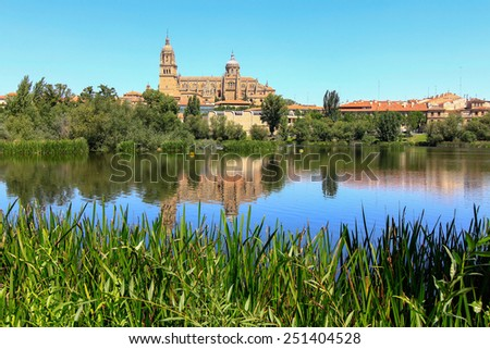 general view of the Cathedral of Salamanca, Spain - stock photo