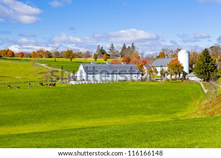 Generic looking colonial style dairy farm in New England, America - stock photo