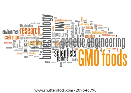Genetically modified food (GMO foods) concepts word cloud illustration. Word collage concept. - stock photo