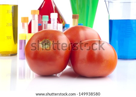 Genetically modified organism - ripe tomatoes and laboratory glassware  - stock photo