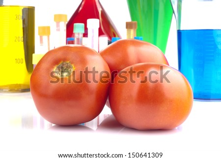 Genetically modified organism - ripe tomatoes and laboratory glassware on white background