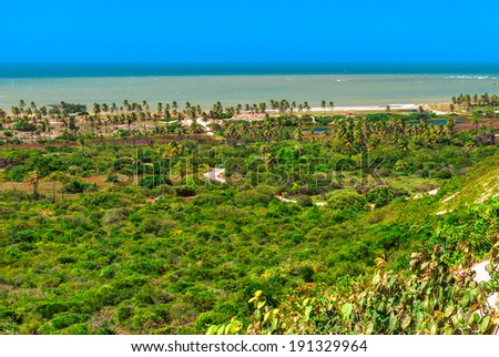 Genipabu coast in Natal, Brazil - stock photo