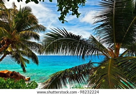 Gentle seascapeI with palmtree, Seychelles, La Digue island - stock photo