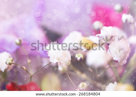 gentle small white flowers, spring floral background  - stock photo