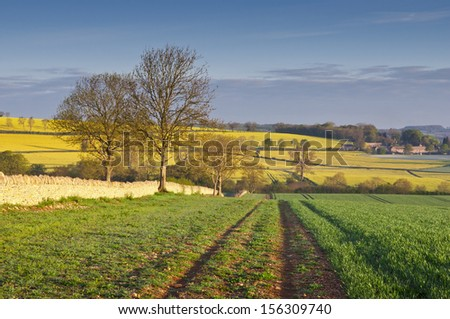Gently rolling hills, ploughed field and traditional drystone wall leading to vibrant yellow crop of canola grown as a healthy cooking oil or conversion to biodiesel as an alternative to fossil fuels. - stock photo