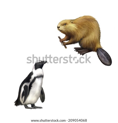 gentoo penguin, Beaver gnawing on tree. North American Beaver, Illustration isolated on white background