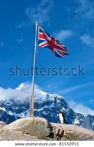Gentoo Penguin beneath British flag at Port Lockroy, Antarctica - stock photo
