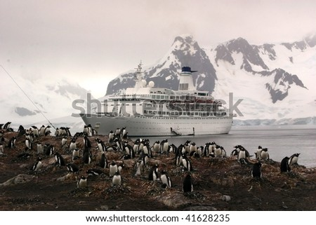 Gentoo Penguins and a Cruise Ship