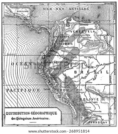 Geographical distribution of quinine Americans, vintage engraved illustration. Industrial encyclopedia E.-O. Lami - 1875.  - stock photo