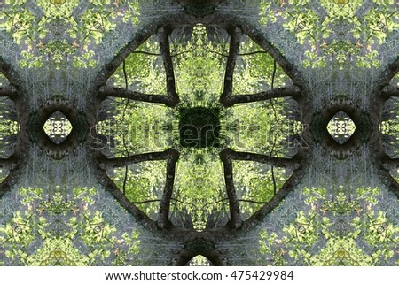 geometric composition fantastic scenery, idyllic plant allegory, mandala, abstract surreal photography, abstract naturalism collection Munimara