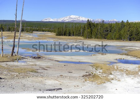 Geothermal activity and colorful Bacteria mats of thermophilic microorganisms in the runoff of hot springs in Yellowstone National Park, Wyoming - stock photo