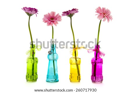 Gerber flowers in row colorful bottles isolated over white background - stock photo