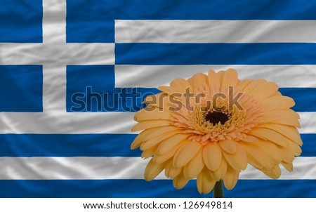 gerbera daisy flower and national flag of greece as concept and symbol of love, beauty, innocence, and positive emotions - stock photo