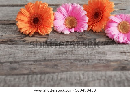 gerbera flowers on wooden background - stock photo