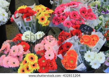 Gerberas in various colors, flower market Aix en Provence  (tags: price and product information in French) - stock photo