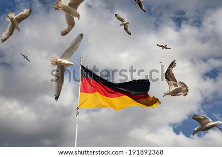 German flag with seagulls - stock photo