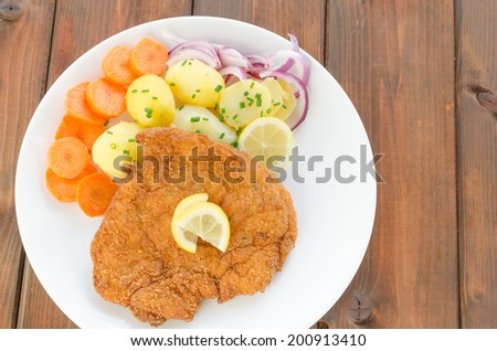 German schnitzel with potatoes, onion and lemon - stock photo