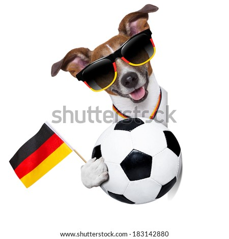 german soccer dog  with german flag waving