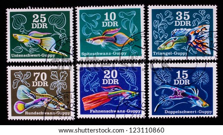 GERMANY - CIRCA 1976: A stamp printed in Germany shows six kind of colorful fish , circa 1976. - stock photo