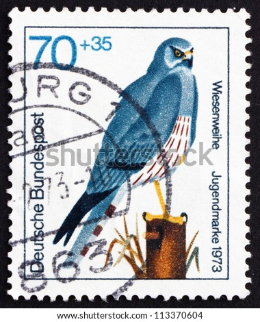 GERMANY - CIRCA 1973: a stamp printed in the Germany shows Montagu'??s Harrier, Circus Pygargus, Bird of Prey, circa 1973 - stock photo