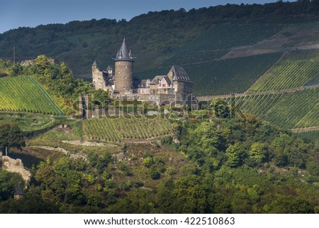 GERMANY, RHINELAND PALATINATE, RHINE VALLEY, 2013-09-30: Castle Stahleck one of the many castles along the Rhine River surrounded by vineyards