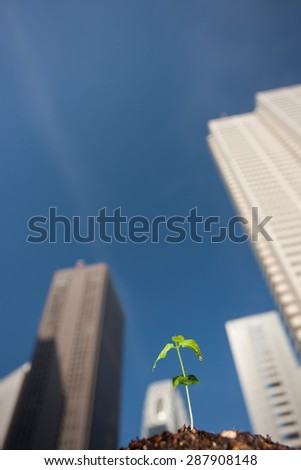 Germination and skyscrapers