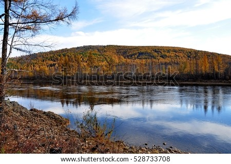 Getkan river in autumn. Amur region. Russia.