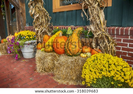 Getting ready for fall displaying pumpkins gourds and corn stalks on bales of hay