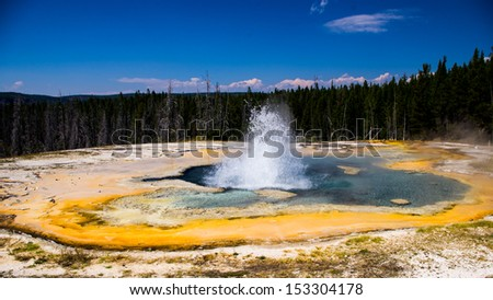 Geyser at Yellowstone National Park - stock photo