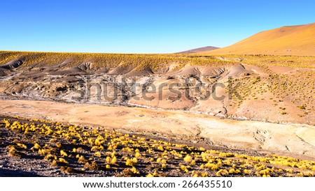 Geysers of the Atacama desert of Atacama, Chile - stock photo