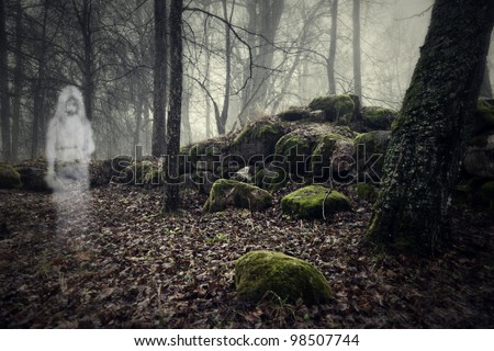 Ghost of a woman in the wood - stock photo