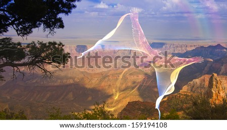 Ghostlike bird in flight above grand canyon rim - stock photo