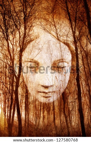 Ghostly female face appearing in misty haunted forest rendered in atmospheric sepia tones. - stock photo