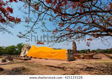 Giant Buddha statue with red flower of Erythrina variegata tree in the historical Park of Ayutthaya, Thailand