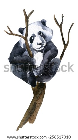 Giant panda on the tree, watercolor illustration - stock photo