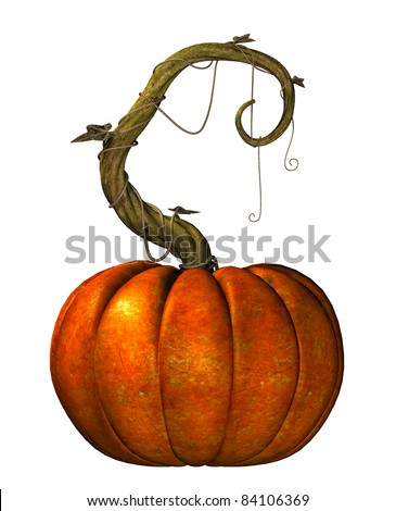 Giant pumpkin on a twisted  vine with leaves. Isolated illustration on white background. Cutout clip art. - stock photo