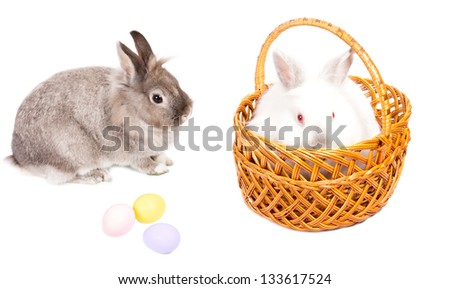 Gift of two cute little Easter bunnies, one fluffy white one in a wicker basket and the second grey one sitting sideways alongside, together with three hand painted colourful Easter eggs on white - stock photo